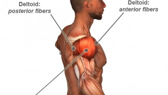How to Recover from a Shoulder Injury