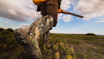 Field Dressing: What You Need to Know