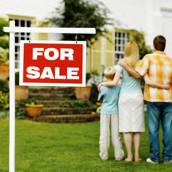 Buying a Home – Expert Advice From a Real Estate Agent